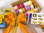 Ganzjahresset mit Schleifenfee - verschiedene Farben